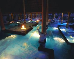 Aquatonic Pool Swan Necks
