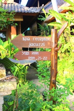 Blissful Bali danyellekelly.com